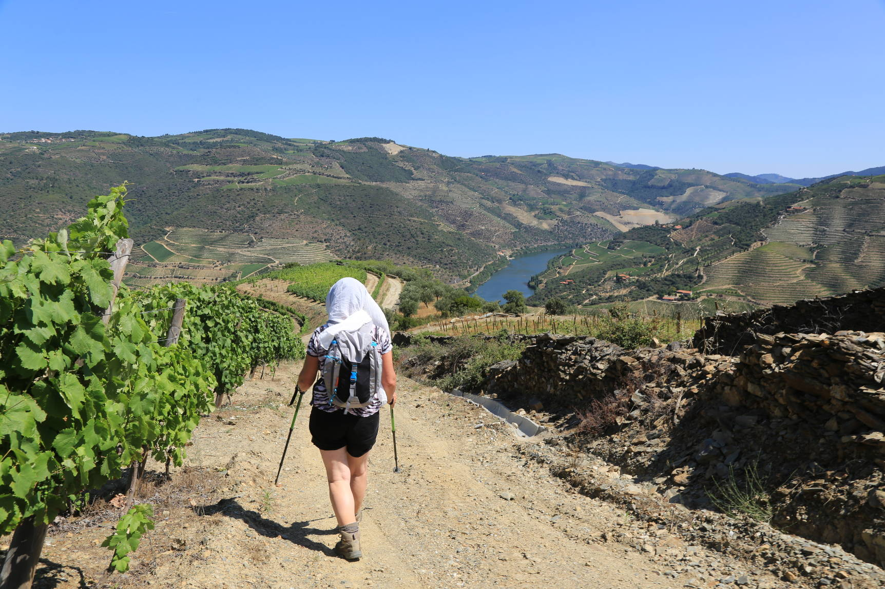 Douro vineyards Walking Trail